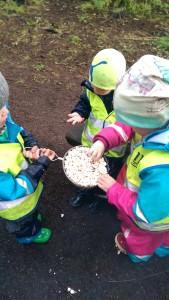 Iceland Sharing Popcorn